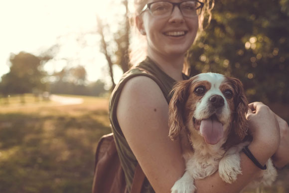 Have fun activities - Why Do We Love Pets?